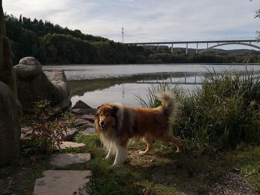 Am Froschgrundsee mit ICE- Brücke im Hintergrund