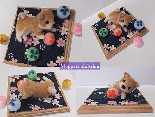 桜模様と和柴