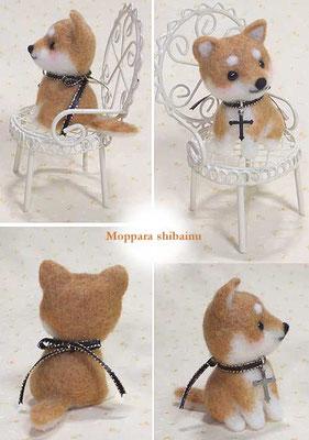 椅子に座った柴犬さん