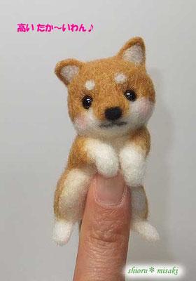 この指とまる柴犬さんw