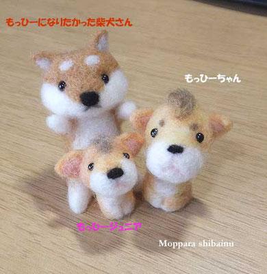 柴犬と変な仲間達(もっひーちゃん親子)