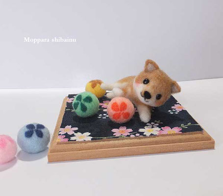 花ボールとゴロン柴犬