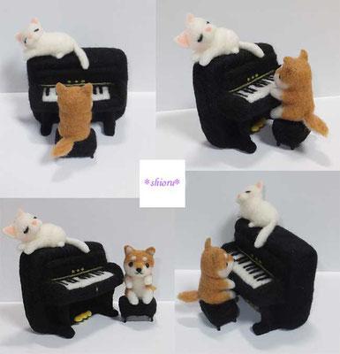 ピアノを弾く柴犬さん