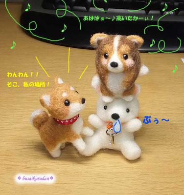 シェルティー&柴犬&白クマちゃん