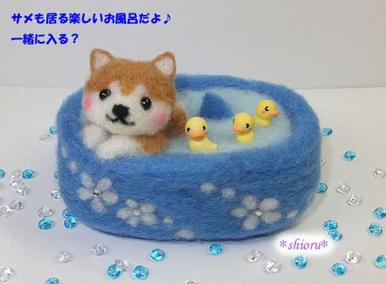 お風呂に入る柴わんこ&サメ