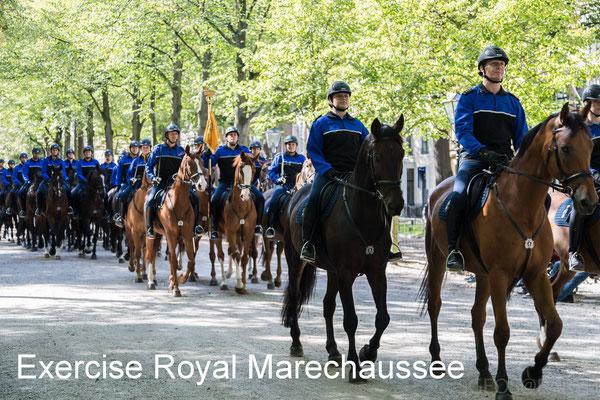 Oefening Bereden Brigade Koninklijke Marechaussee voor Prinsjesdag - 15 Sep 2018