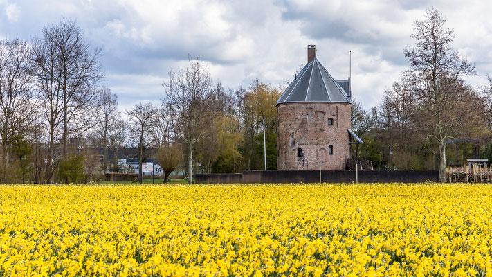 Huys Dever - Lisse -april