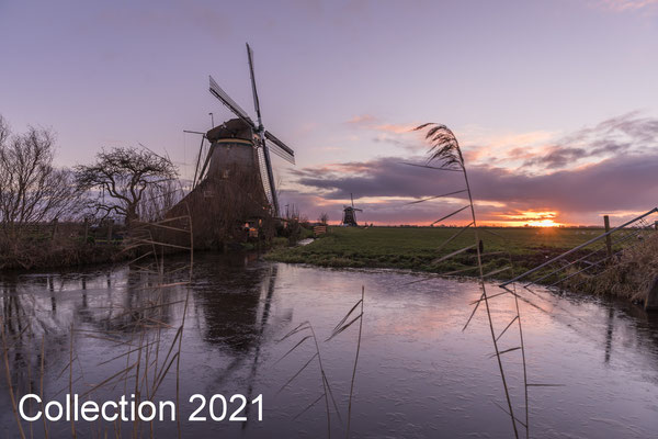 Collection January 2021