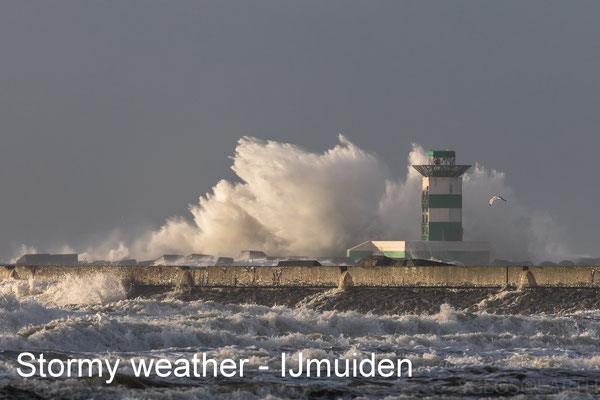 Stormy weather at zuidpier IJmuiden - 08 Dec 2018