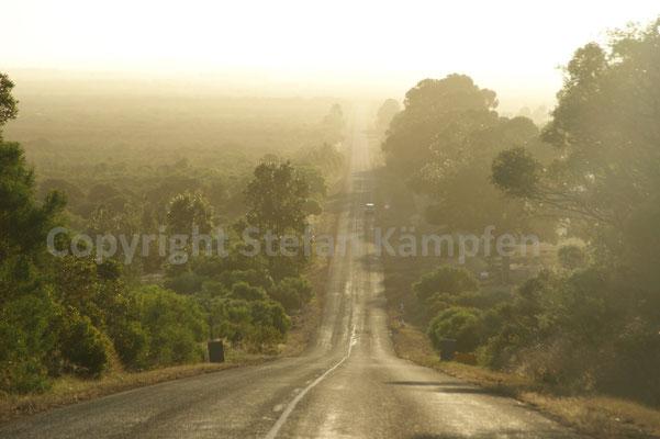 Highway durch den australischen Busch nahe Esperance