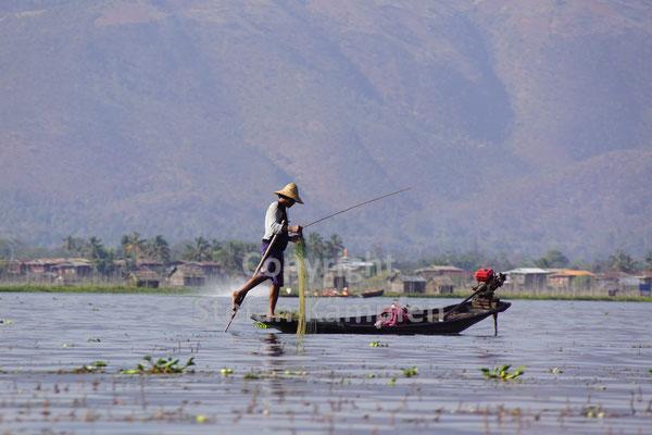 Traditioneller Fischer auf dem Inle See