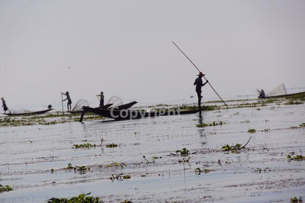 Ein Bild fast wie ein Scherenschnitt: Männer holen auf dem Inle See ihren Fang ein