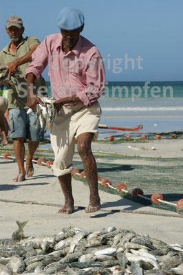 Männer tragen frisch gefangener Fisch zum Strand