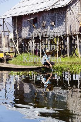 Die Menschen am Inle See leben in Stelzenhütten