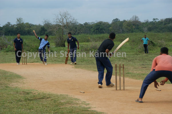 Baseball: Beliebter Sport in Sri Lanka