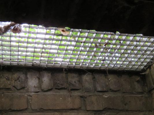 Gitter-Abdeckungen von Lichtschächten sind zu weitmaschig