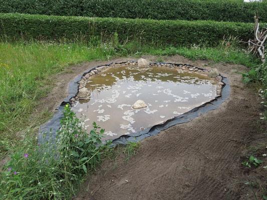 Fischfreier Teich - Der Teich ist voll und die Folie zurecht geschnitten.