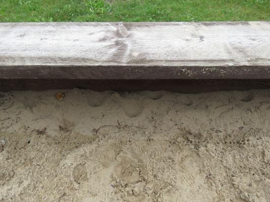 Ameisenlöwen-Biotop im Sandkasten