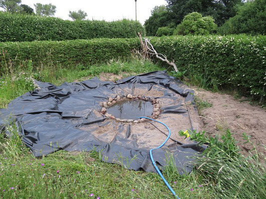 Fischfreier Teich - Die Vertiefung (das Wasserreservoir) ist schon befüllt.