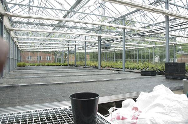 ...mit vielen Anbaumöglichkeiten für Pflanzen aller Art...