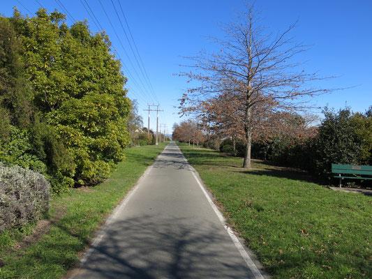 レイルウェイリザーヴ 旧線路が遊歩道になっており、7kmほどの周回もつくれます