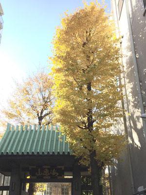 新宿区大久保の書道教室は全龍寺にあります
