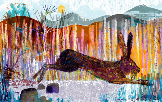 "Jill Calder Illustration - Children's Illustration - ""Hiding Hare"""