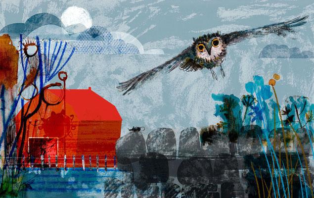 """Jill Calder Illustration - Children's Illustration - """"The Moth Quiet Owl"""""""