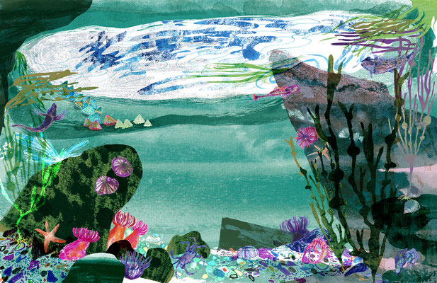 "Jill Calder Illustration - Books - ""The Sea"" by Miranda Krestovnikoff - Bloomsbury"