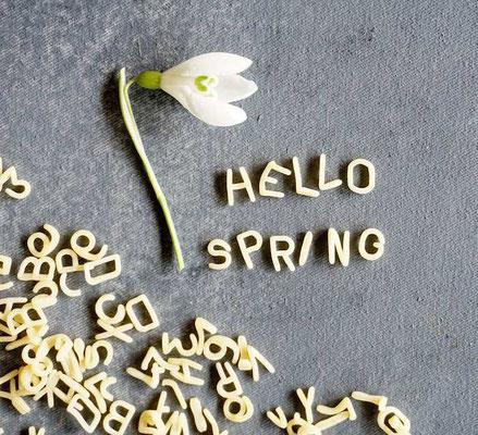 hello spring (develloppa)