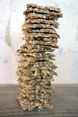 Körner-Knäckebrot (develloppa)