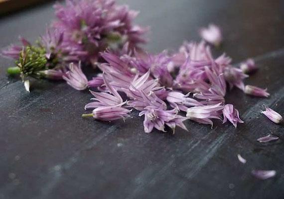 nach dem Verzehr dieser hübschen Blüten riecht man ziemlich zwiebelig (develloppa)