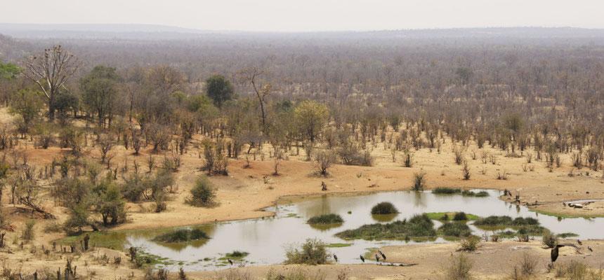 Victoria national park, Zimbabwe