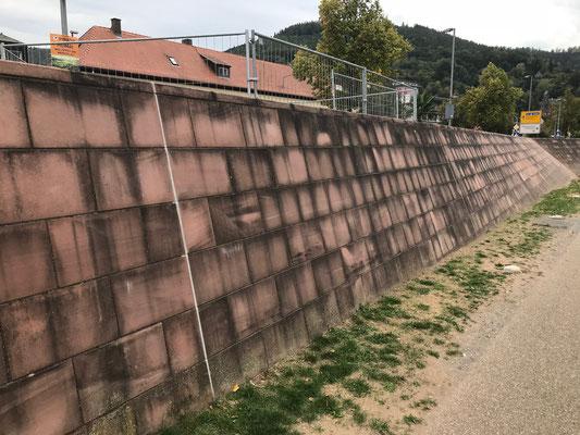 """Mittendrin an einer """"gepflegten"""" Mauer"""