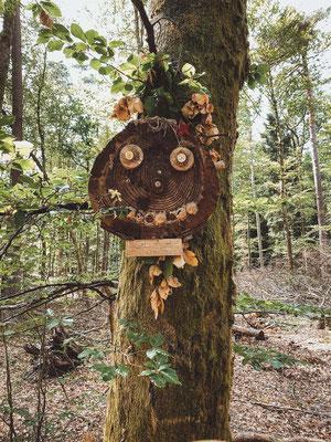 Wanderweg Altschlosspfad, Pfälzer Wald