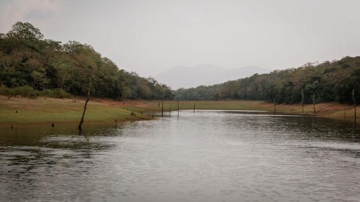 Periyar Nationalpark, Indien