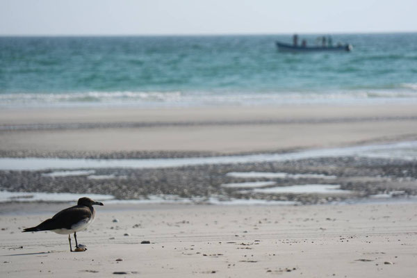 Mughsail-Beach, Oman