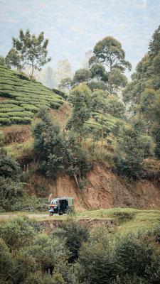 Tuk Tuk, Indien