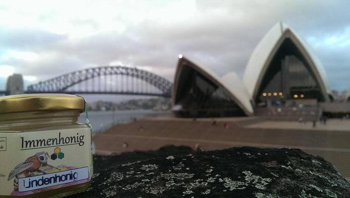 Honig in Sydney.