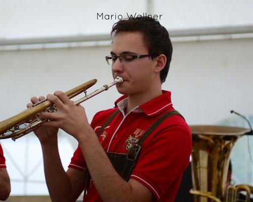 Mario Wallner (Trompete)