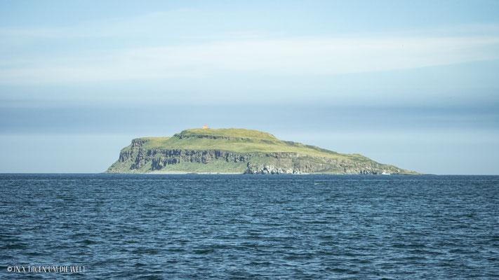 Papageientaucher Island