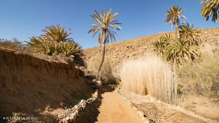 Wanderung Fuerteventura