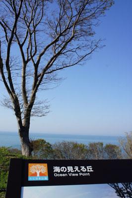 「海の見える丘」