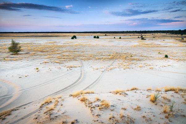Lieberoser Wüste