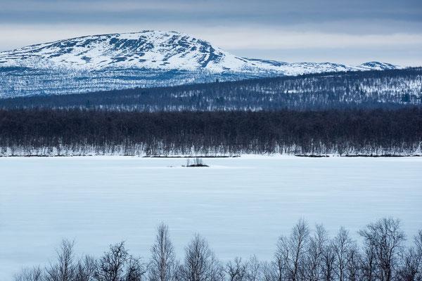 Lebensräume in Lappland