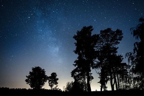 Milchstraße über der Heide