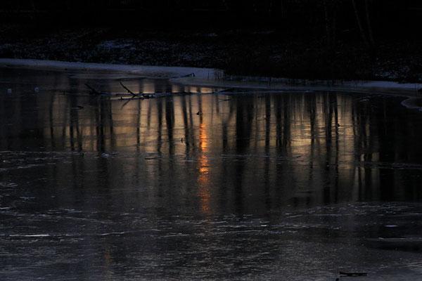 """""""Feuer und Eis"""" - Park in Rostock, Januar 2014"""