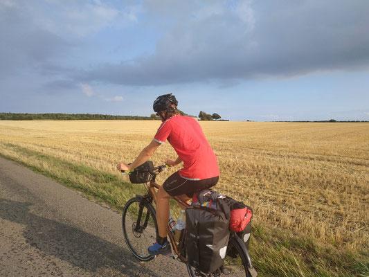 Überall Felder in Dänemark