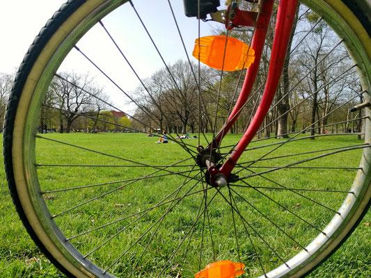 Radfahren im Prater