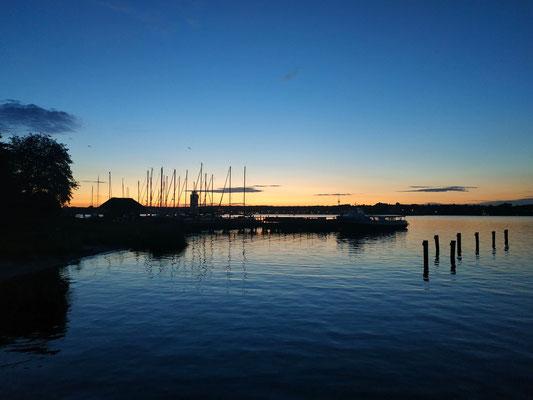 Ausblick auf Schleswig